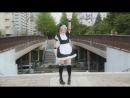 【TIGERxTOKYO】Cat Ears Archive ネコミミアーカイブ 踊ってみた 【オリジナル振付】