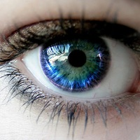 испытание на зрение