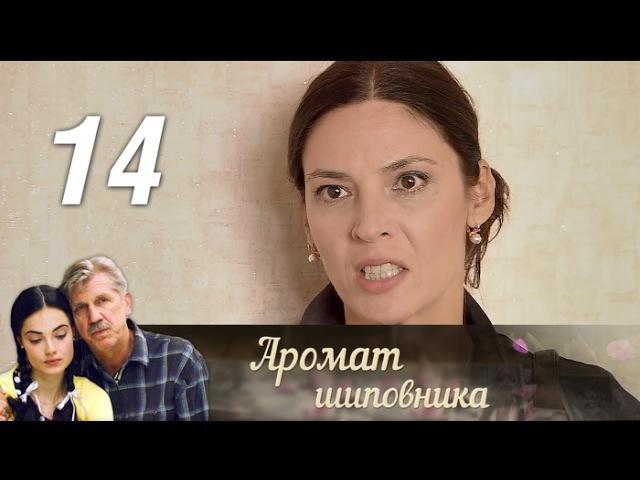 Аромат шиповника. 14 серия (2014) Мелодрама @ Русские сериалы