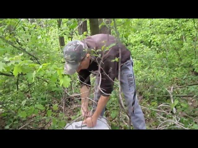Ловля роев.мои рабочие ловушки.2014 год