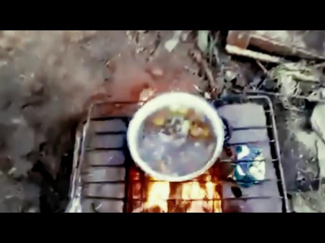 У рогулей взорвался грибной суп