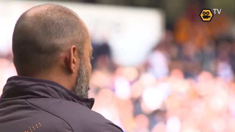 A view of Diogo Jota's goal from Wolves TV's pitch side camera