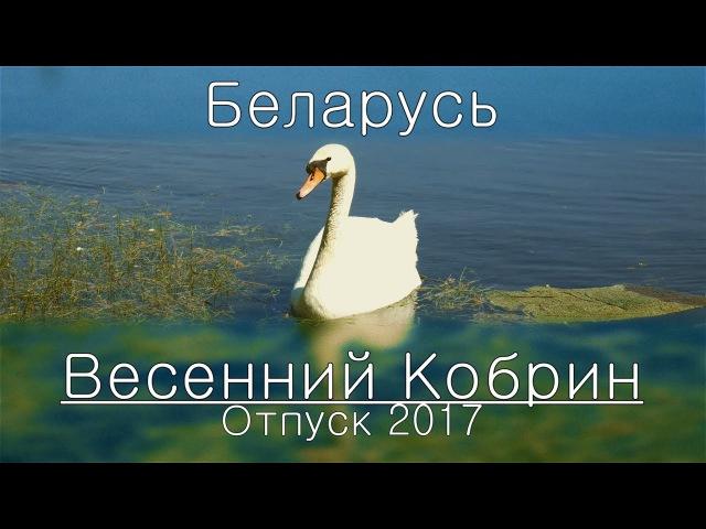 Беларусь. Кобрин. Весна 2017