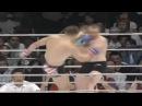 Мирко Крокоп - самый сильный удар ногой в мире 2703 кг!