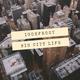 Dj IGorFrost - Big City Life