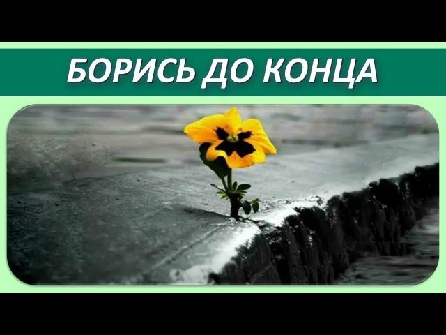 Как стать Счастливым Принцип 3 Боритесь До Конца и Не Сдавайтесь