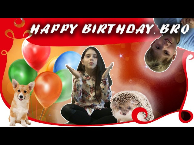 Ежики, ВЕЛЬШ-КОРГИ, ЕРАЛАШ или С Днем рождения, БРО от ВьюгаMIX | Hedgehogs, Welsh Korgi H-BDAY BRO