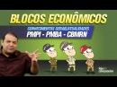 Blocos Econômicos Helder Coelho