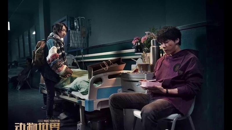 20190125 EP3*** 动物世界 Live 摩登兄弟刘宇宁 2019歌手第三季 第3期