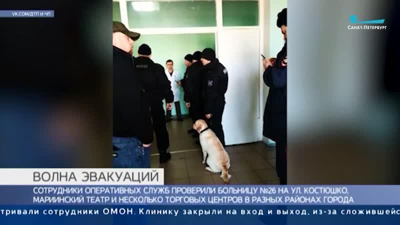 ТК Санкт Петербург взрывотехники ОМОН обследовали больницу №26 на ул Костюшко в Санкт Петербурге
