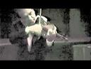 Paganini Nel Cor Piu variations - Ruggiero Ricci