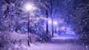 Зима Снег Сумерки Фонарь Футажи для видеомонтажа бесплатно в Full HD1080p