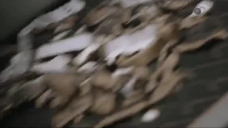 Брикеты для камина из вощёной картонной тары Сделано из вторсырья