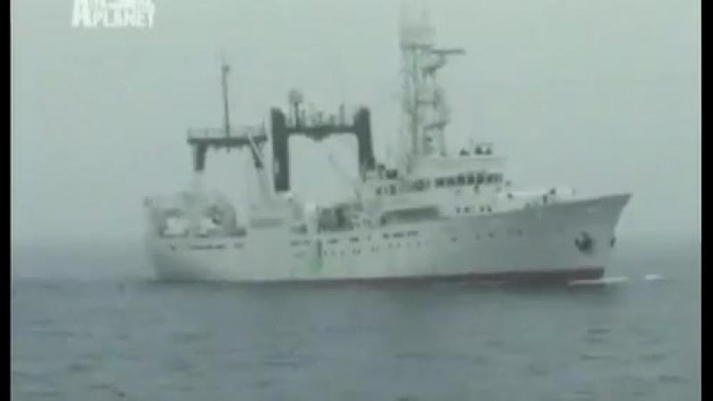 Китовые Войны Sea Shepherd