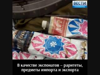 В БФУ им. Канта открылась Международная конференция, посвящённая СЭВ