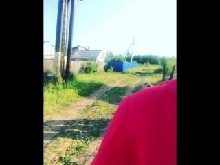 Камил Кираметдинов - Нервыны бетермә! (И. Нагимованың улы)