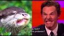 Otter foto's met Benedict Cumberbatch Johnny Depp - The Graham Norton Show op Acht