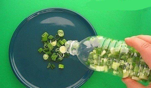 КАК ПРАВИЛЬНО ХРАНИТЬ ПРОДУКТЫ... 1. Если хранить лук в колготках, он не будет портиться до 8 месяцев. 2. Храните резанный зеленый лук в морозилке в пластиковых бутылках. Только убедитесь, что
