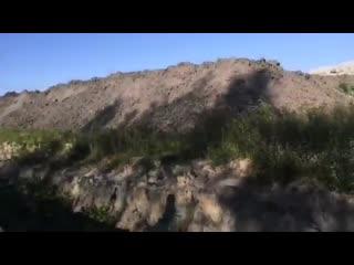 Сокрытие нарушений на полигоне 25 га вблизи д Первое Мая