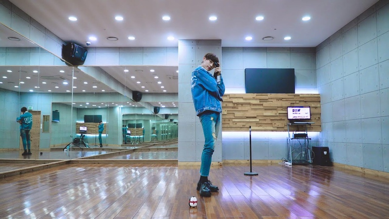 FAVEBOYS(페이브보이즈) : 임지민(Lim Jimin) – 'CAN'T STOP THE FEELING!' Performance Practice l THE FAN 더팬