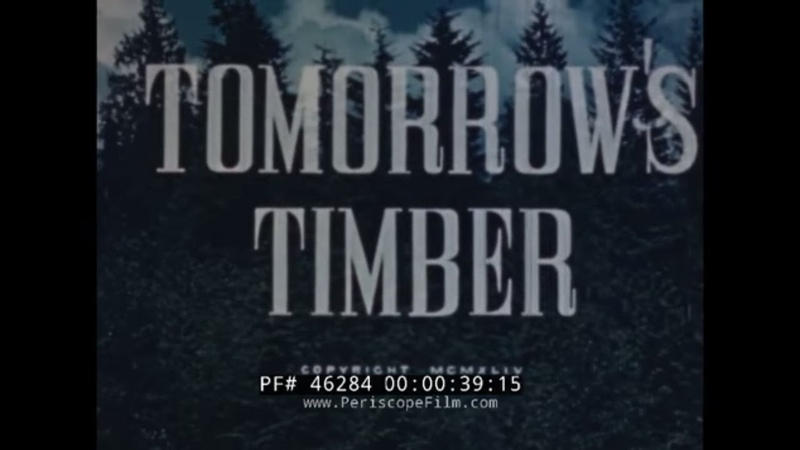 1944 FORESTRY LUMBER INDUSTRY DOCUMENTARY TOMORROW'S TIMBER 46284
