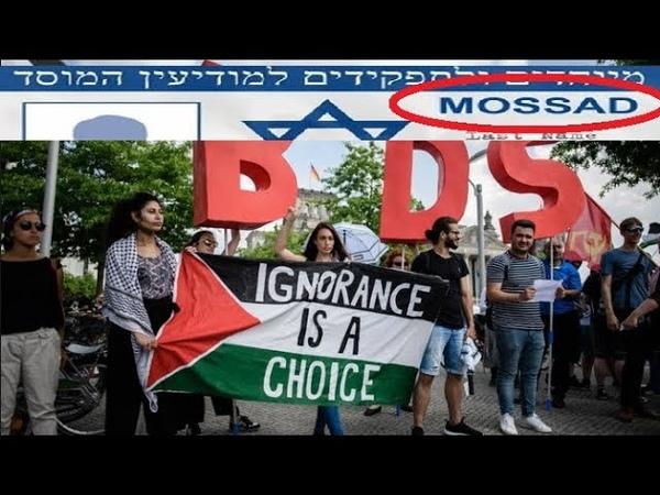 REGARDEZ le BDS Fait TREMBLER ISRAËL Mossad en Action Ne LÂCHER RIEN