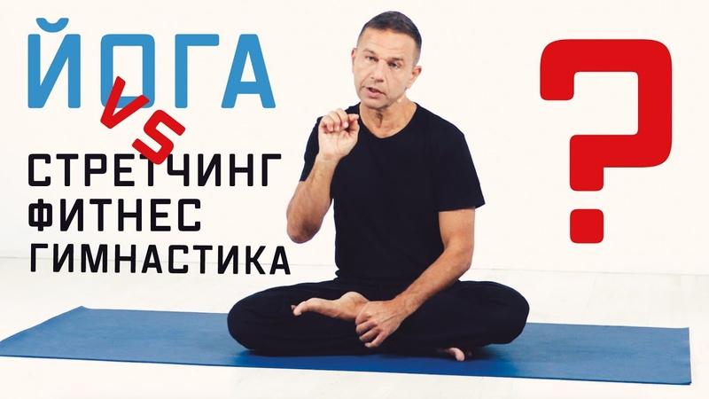 Чем йога отличается от растяжки, стретчинга, фитнеса, гимнастики?