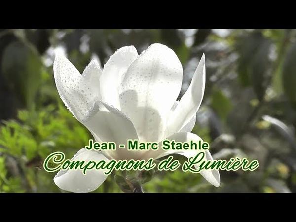 Compagnons de Lumière - JEAN - MARC STAEHLE