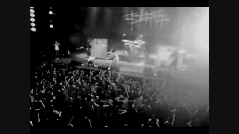5 diez - Спрут (концертное)