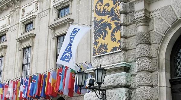 Украинская делегация попыталась в ОБСЕ лишить слова представителя Крыма
