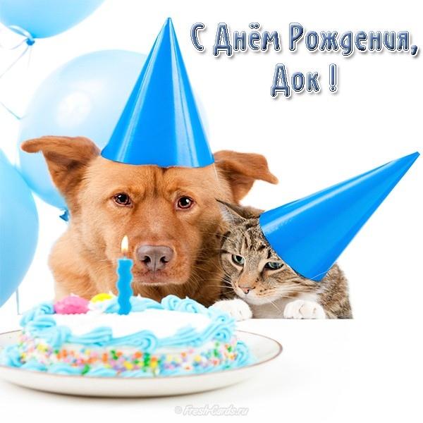 Поздравить с днем рождения ветеринара в прозе