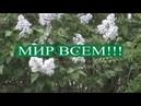 В. Ковалевский писатель, психолог БЕЗ,agrilion