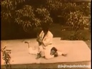 "Jiujitsu/judo oldschool on Instagram: ""Judô judo japanesemartialarts judoka gi japanesejudo kodokan judooldschool judolove newaza katame..."