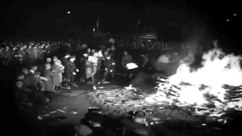 Сожжение книг в нацистской Германии 1933 г