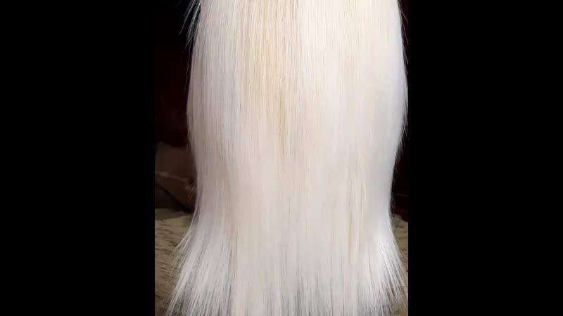 волосы после ботокса.👍😊👩🌸🌸🌸