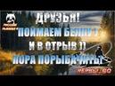 Russian Fishing 4 ✅Друзья! Поймаем белку) Рыбу, если что)) Половим рыбку разную. Залетайте в гости!