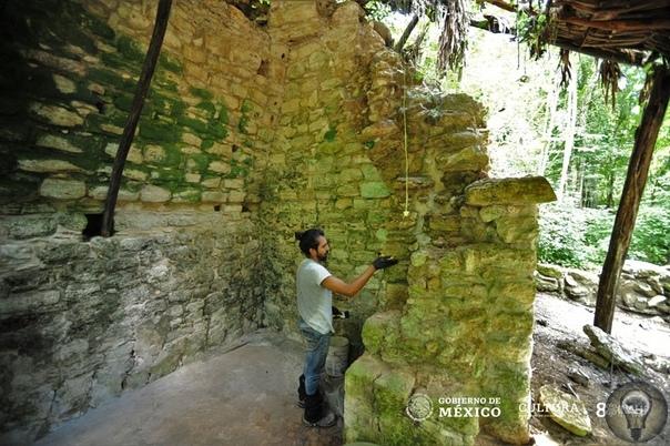 В Мексике обнаружили огромный дворец майя На полуострове Юкатан археологи обнаружили здание дворца эпохи майя, которое составляет в длину 55 метров, 15 метров в ширину и 6 метров в высоту,