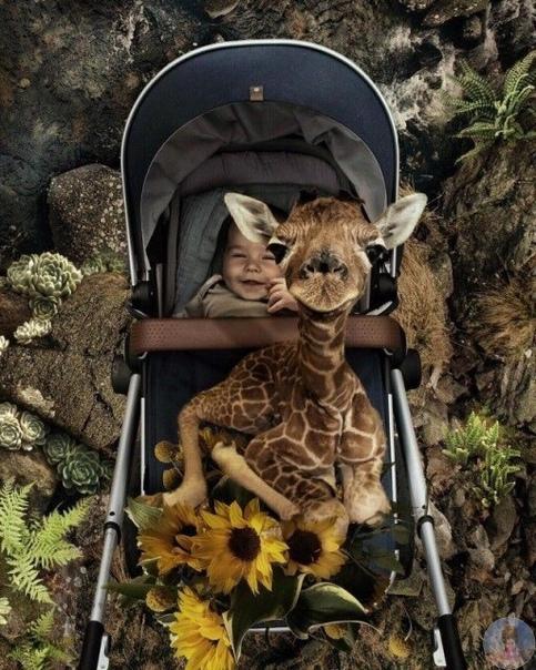 Фотограф Марсель ван Льюит использует свои профессиональные навыки, чтобы создать удивительный сказочный мир для своих детей