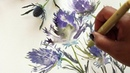Eryngium Watercolor and Ink Painting Tutorial