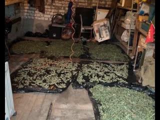 Больше пяти килограммов наркотических средств обнаружили самарские полицейские в гараже местного жителя