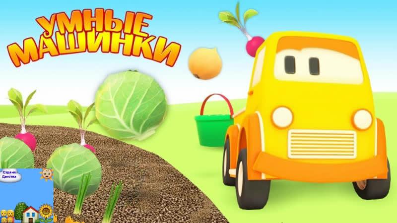 Страна Детства - Умные машинки считают овощи на грядках