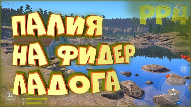 Палия на фидер Фарм на Ладоге Русская рыбалка 4 Где клюет палия и сиг