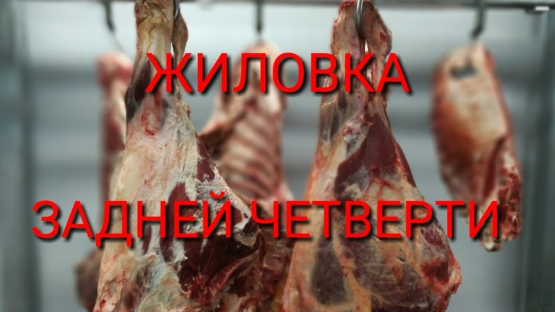 Обвалка говядины ЧАСТЬ 2 АЯ Жиловка задней четверти