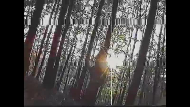 Trevor Applebaum Abduction Video