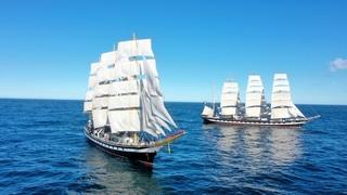 Торжественная встреча учебно-парусных судов «Паллада», «Крузенштерн»,  «Седов»