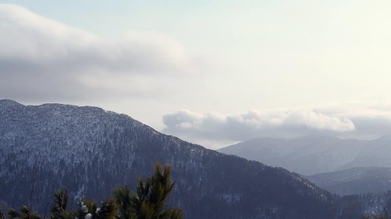 Шли на гору Тургенева