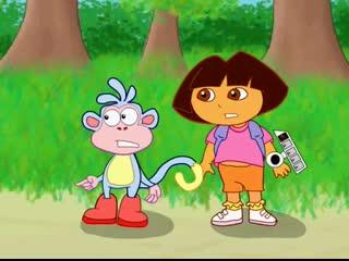 Dora VS Swiper