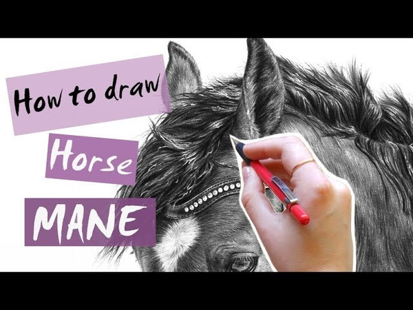 How to draw and shade realistic horse mane Leontine van vliet