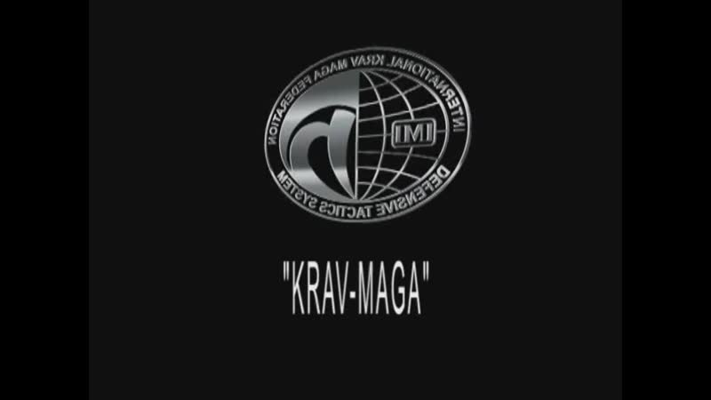 IKMF krav maga practitioner part 1