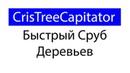 Cristichi's Tree Capitator в Minecraft быстрый сруб деревьев